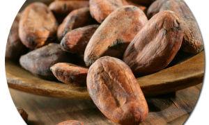 Как приготовить какао из бобов?