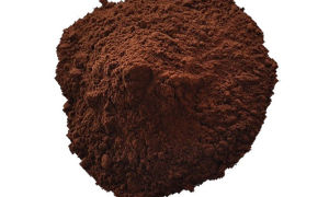 Чем можно заменить какао порошок?