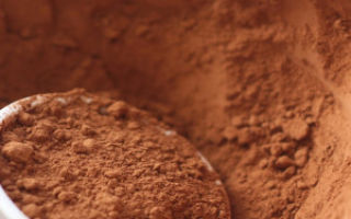 Вред и польза какао