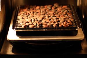 жарка какао бобов