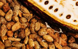 Как приготовить какао бобы?